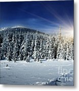 Beautiful Winter Landscape With Snow Covered Trees Metal Print by Boon Mee