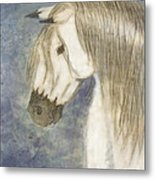 Beauty And Strength1 Metal Print