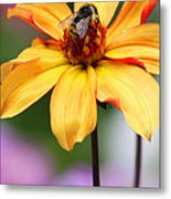 Beeutiful Metal Print by Melisa Meyers
