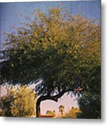 Bent But Not Broken Metal Print by Laurie Search