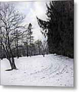 Berkshires Winter 9 - Massachusetts Metal Print