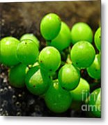 Berries On Water Metal Print by Kaye Menner