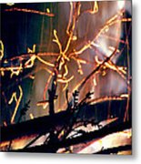 Birthed From Fire Metal Print by Rory Sagner