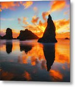 Boldly Bandon Metal Print by Darren  White