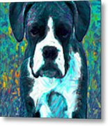 Boxer 20130126v4 Metal Print by Wingsdomain Art and Photography