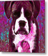 Boxer 20130126v7 Metal Print by Wingsdomain Art and Photography