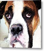 Boxer Art - Sad Eyes Metal Print by Sharon Cummings