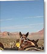 Break Time Metal Print by Janis Tremper