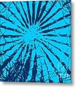 Cactus - Reunion Island-indian Ocean Metal Print by Francoise Leandre