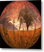 Captured Flame Metal Print