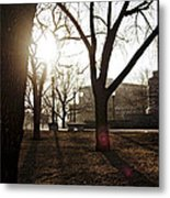 Casting A Shadow Metal Print by Eugene Bergeron