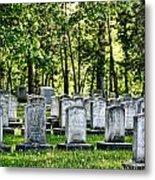 Civitl War Warrior Graves Metal Print