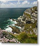 Cliffs Of Kerry Ireland Metal Print by Dick Wood