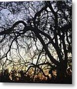 Cluttered Sunrise Metal Print by Kiros Berhane
