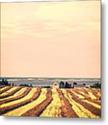 Coastal Farm Pei Metal Print by Edward Fielding