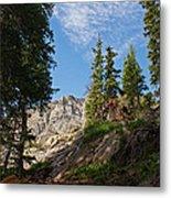 Colorado Mountain Hike Metal Print