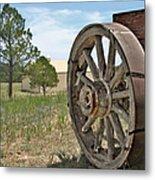Colorado - Where The Columbines Grow Metal Print by Christine Till