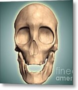 Conceptual Image Of Human Skull, Front Metal Print by Stocktrek Images