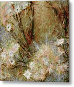 Daisy A Day 22 Metal Print