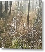 Dew Kissed Web Metal Print by Chasity Johnson