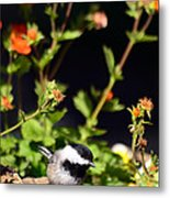 Do You Have Any Flowers That Lived Metal Print by Lori Tambakis