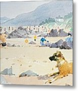 Dog On The Beach Woolacombe Metal Print by Lucy Willis