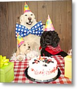Doggy Birthday Party Metal Print by Jan Tyler