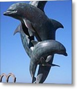 Dolphin Dance Metal Print