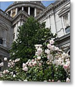 Dome Of St Paul's Metal Print by Stephen Norris