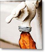Drip Leaf Metal Print by Bobbi Feasel