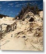 Dune Glue Metal Print by Adam Jewell