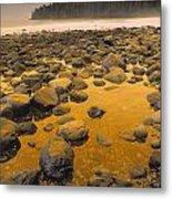 D.wiggett Rocks On Beach, China Beach Metal Print