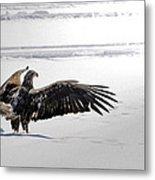 Eagle Prayer Metal Print by RJ Martens