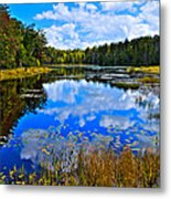 Early Autumn At Fly Pond - Old Forge Ny Metal Print by David Patterson