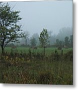 Early Morning In The Country Metal Print by Margaret McDermott