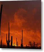 Embers Of The Day Metal Print