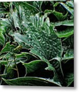 English Country Garden - Series V Metal Print by Doc Braham