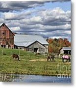 Fall At The Horse Farm Metal Print
