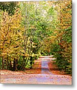 Fall Pathway Metal Print by Judy Vincent