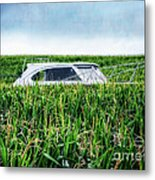 Far Afield Metal Print