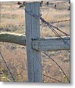 Fenced Metal Print by Kelly Kitchens