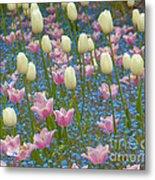 Field Of Blooms Metal Print by Sarah Crites