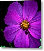 Flower Bug- Viator's Agonism Metal Print by Vijinder Singh
