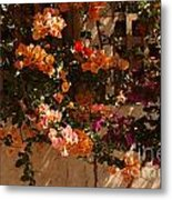 Flower Trellis In La Jolla Metal Print