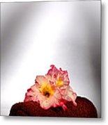 Flowers On Towel Metal Print by Olivier Le Queinec