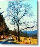 Gap Road Metal Print by Joyce Kimble Smith