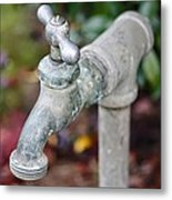 Garden Faucet Metal Print by Cathie Tyler