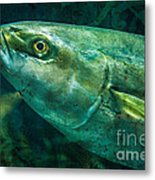 Go Fish 2 Metal Print by Pam Vick