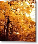 Golden Leaves 2 Metal Print by Jocelyne Choquette