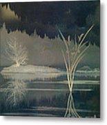 Golden Pond Lily Metal Print by Bedros Awak